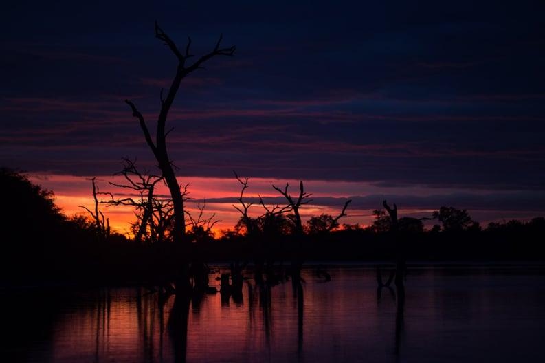 Atardecer en Laguna Capitán - Chaco Paraguayo - Tetsu Esposito