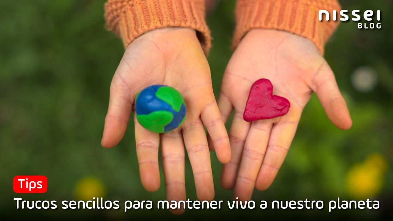 Mes del medio ambiente: 5 tips para cuidar nuestro planeta